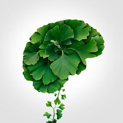 Green Leaf Brain: How to Prevent Dementia